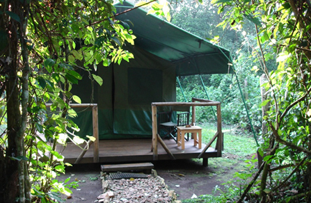 Kibale-forest-camp-tent