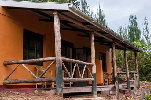 gorilla-valllye-lodge