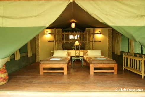 kibale-forest-camp-twinbed