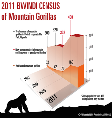 gorilla-population-increase