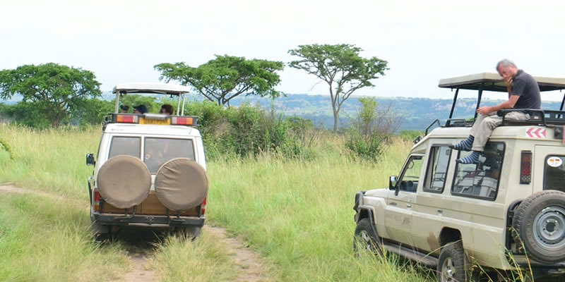 Pop-up Land cruisers for game viewing